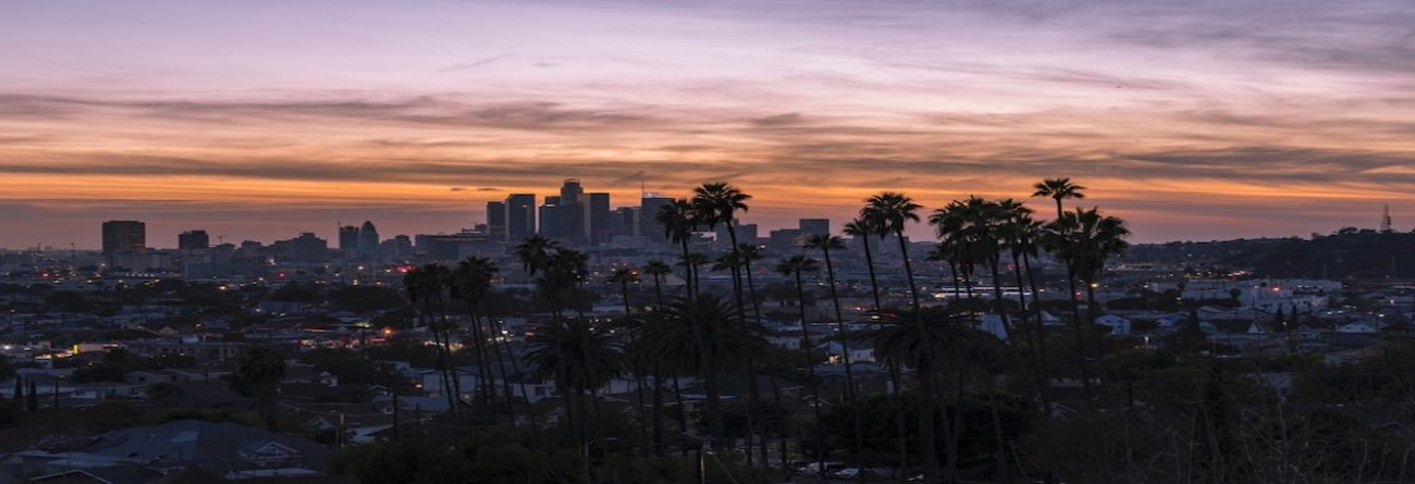 Country, United States, Travel destination, los angeles, palm trees, skyscrapers