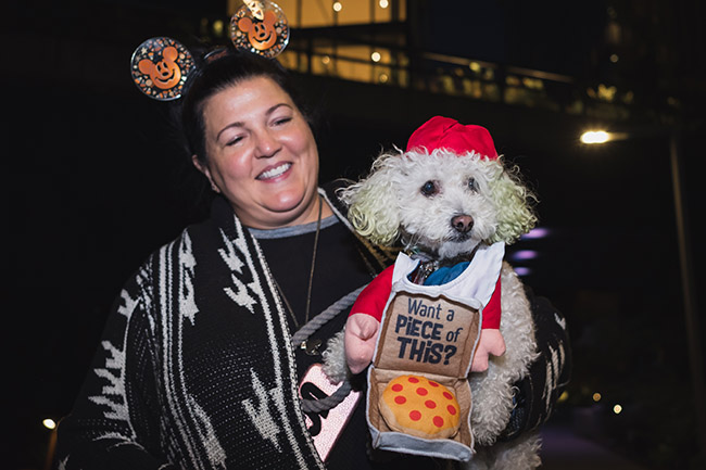 delivery dog, pizza delivery, pizza dog, cute dog costume ideas