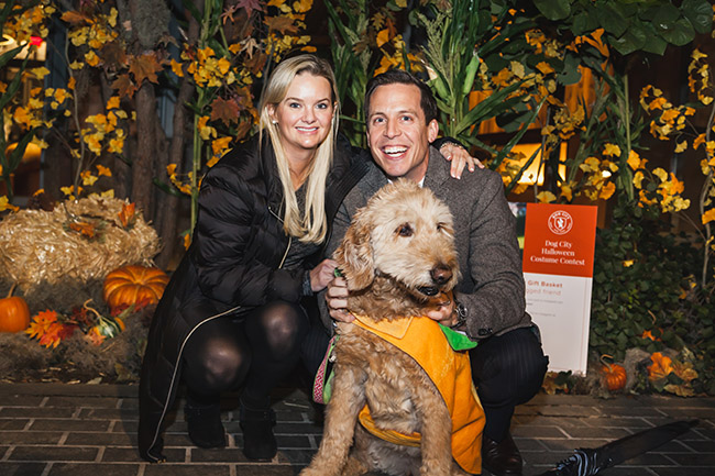 family with dog, pumpkin costume, ideas for halloween