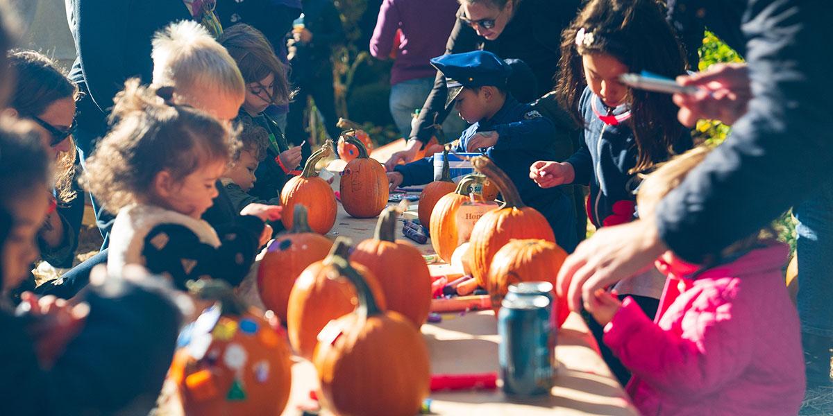 Pumpkin patch, kids and pumpkins, children and pumpkins, pumpkin patch