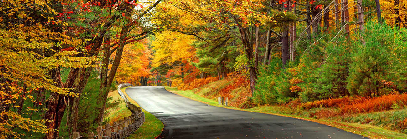road in the fall, fall foliage, fall leaves, new england in the fall