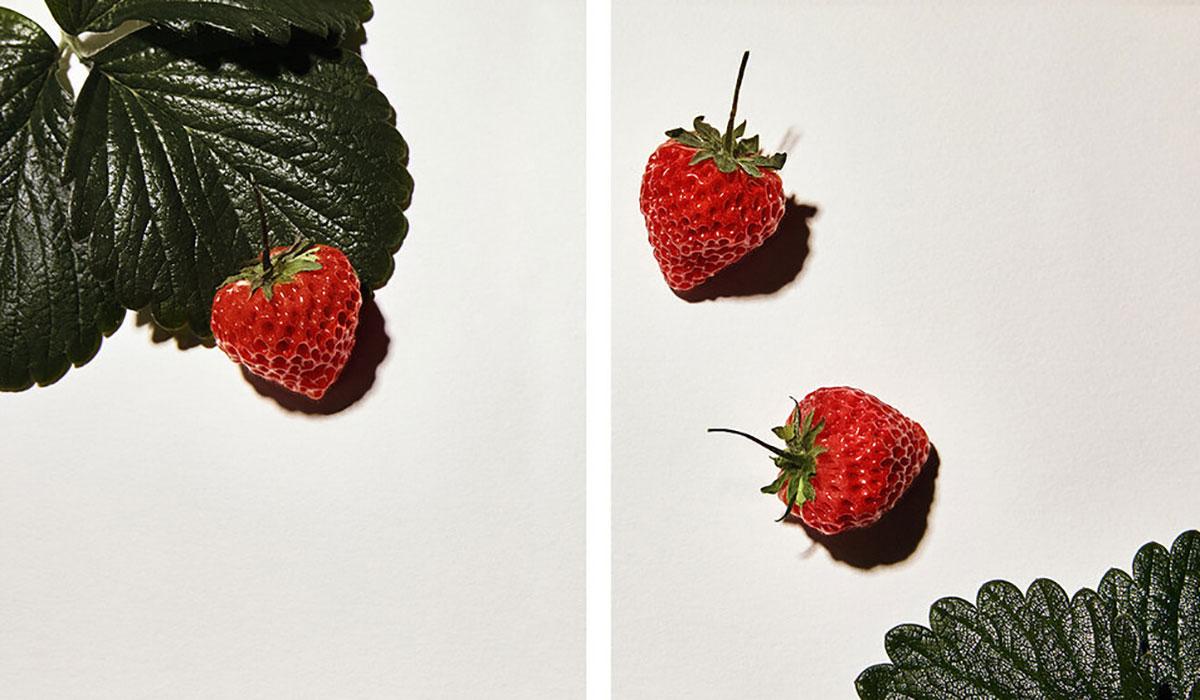 oishii berry, best strawberries
