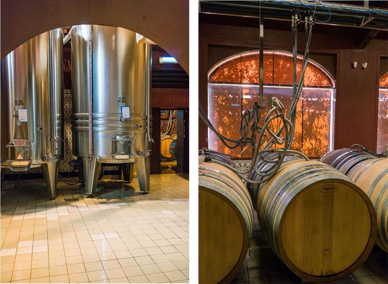 fermenting, fermenting rose, fermenting
