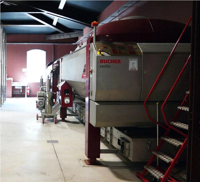 pressing, pressing wine making